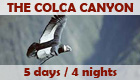 Program: The Colca Canyon - 3 days / 2 nights